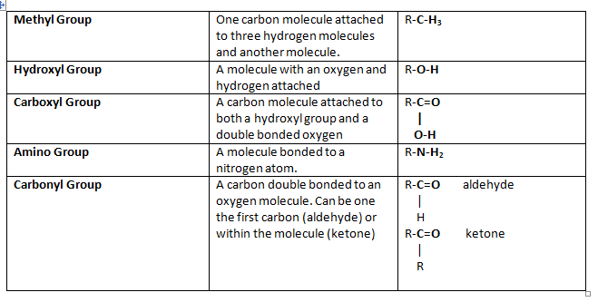 Structure of Biochemical Compounds - SBI - 4U Website